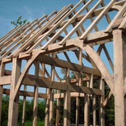timberbuildings01